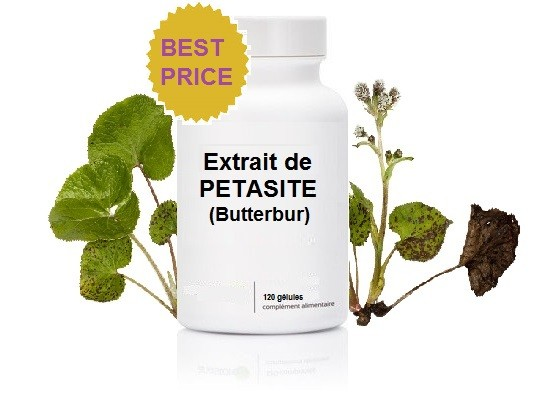 Petasite (Extrait) - (120 gélules de 75mg)