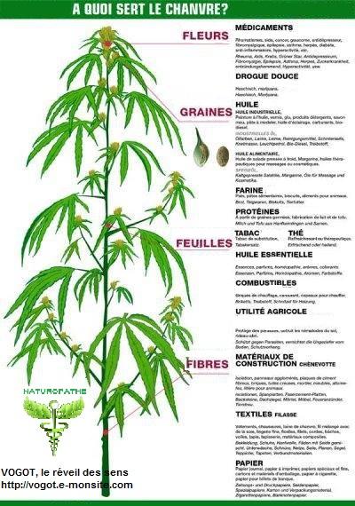 A quoi sert le medicament fluoxetine : CanadaDrugs