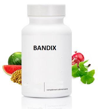 Bandix (120 gélules)