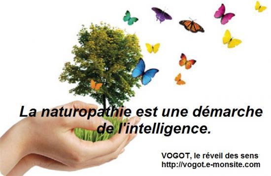 La naturopathie est une demarche de l intelligence