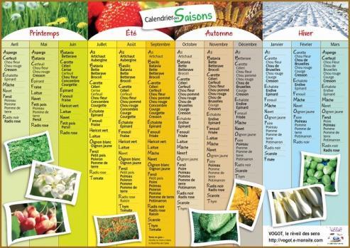 Mini fruit et legume saison
