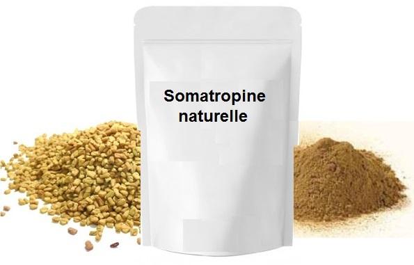 Somatropine naturelle bio 1