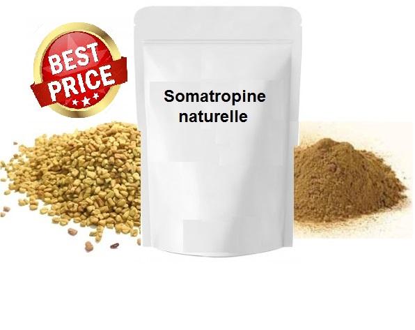 Somatropine naturelle (Poudre pour boisson) - (450 g)